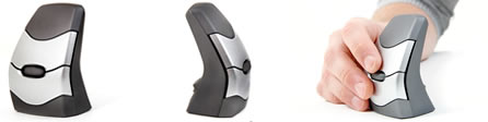 DXT Ergonomic Wireless Mouse 2